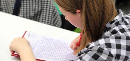 домашние задания, с помощью, PROMT Online, делаете, помогает