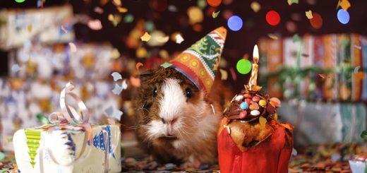 с днем рождения, на 6 языках, красиво поздравить, подарки, на английском